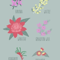 Australian Flower Things