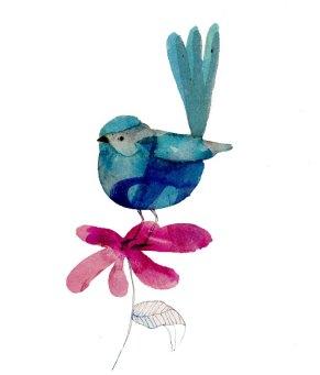 bluefairywren